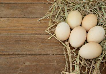 Jajko kurze – produkt idealny