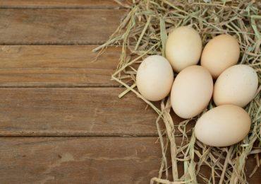 Jakie wartości odżywcze ma kurze jajko?