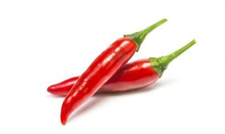 papryczki chilli z kapsaicyna