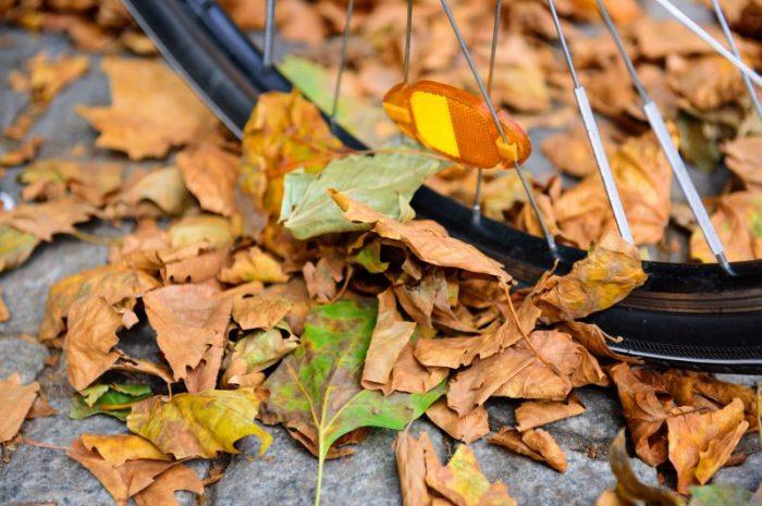 Odblaski – dlaczego warto ich używać?