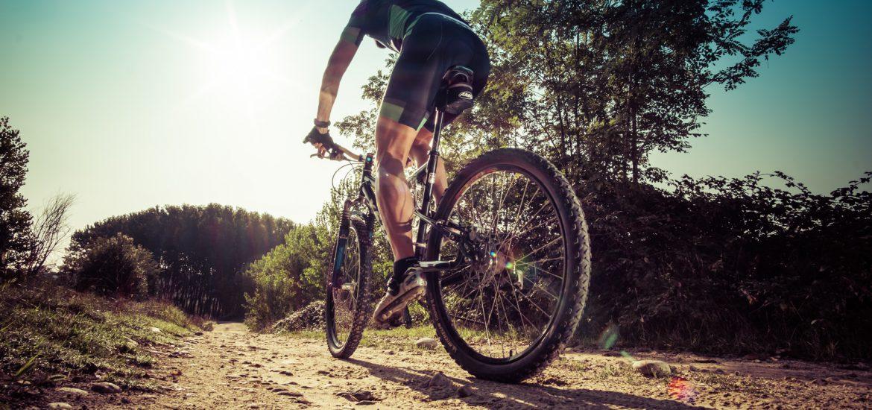 Rower górski – jak wybrać odpowiedni model?