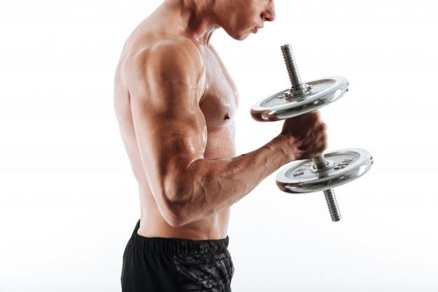 trening biceps chwyt mlotkowy